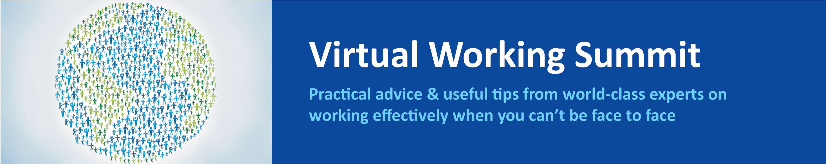 Virtual Working Summit